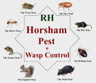 Number one Pest control